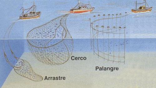 Puertos de interés pesquero
